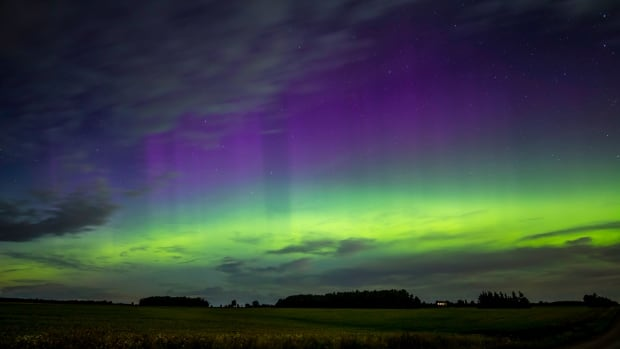 Bright green and purple northern lights, or aurora borealis, light up the sky in Alma, Ont., on Sept. 7.