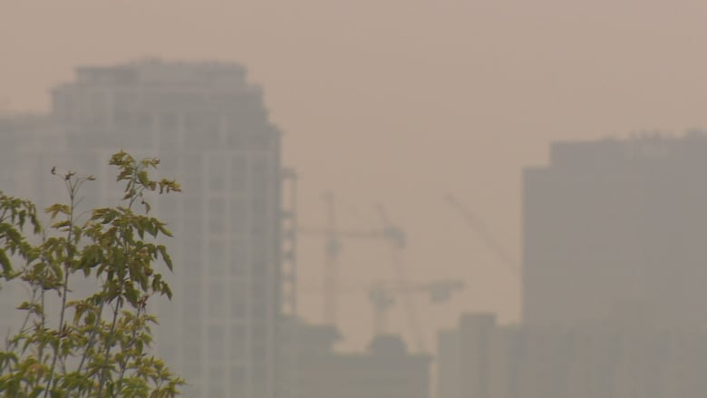 forest fire causing smoke in calgary coughing how to stop