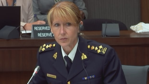 Joanne Crampton, RCMP assistant commissioner for federal policing criminal operations, told MPs studying the government's cannabis legislation that the police force is concerned organized crime will remain active in the pot market.