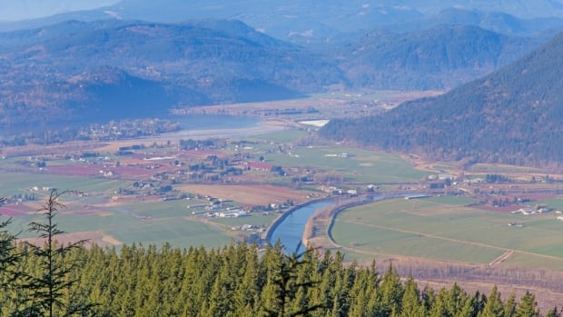 This photo shows a view of Mission from Mount Sumas. Two regional districts are concerned a proposed gravel quarry could be damaging, visually and in other ways, to a park on the mountain.