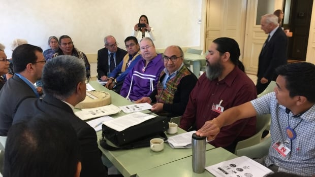 Russ (purple shirt), meeting with members of  the United Nations Committee on the Elimination of Racial Discrimination (CERD).