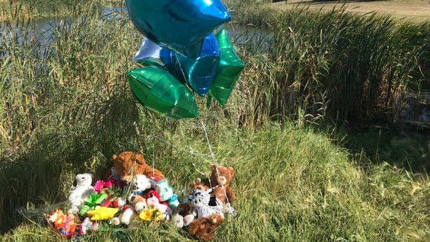 People have left stuffed animals and balloons at the pond near Dundonald School.