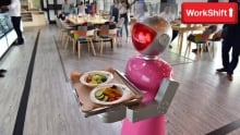 The future of work - robot waiter
