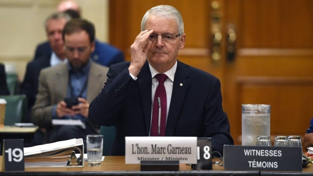 Minister of Transport Marc Garneau appeared as a witness at a committee on Parliament Hill in Ottawa on Thursday, urging the committee's members to pass his air passenger bill of rights quickly.
