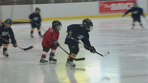 Smaller ice surfaces are coming for tyke level players, but not all GTA hockey officials are completely sold.