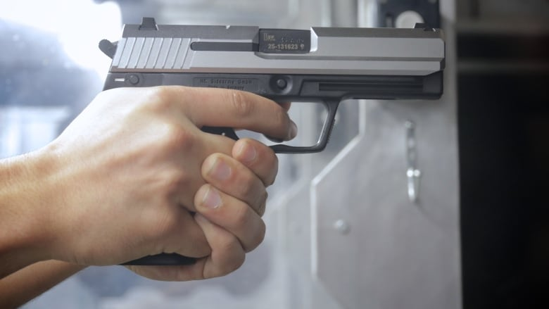 'Find them all and just burn them': The fight against illegal guns in N.S.
