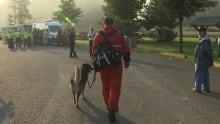 canine unit yvon lacasse search