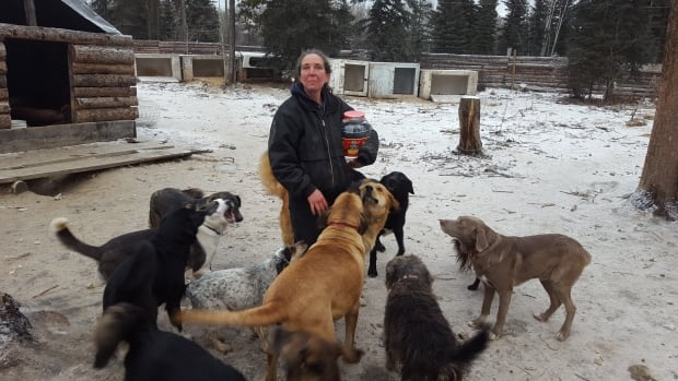 Shelley Cuthbert at her kennel in Tagish, Yukon, last year. A group of neighbours sued Cuthbert, complaining that the dozens of dogs disturbed their peace.