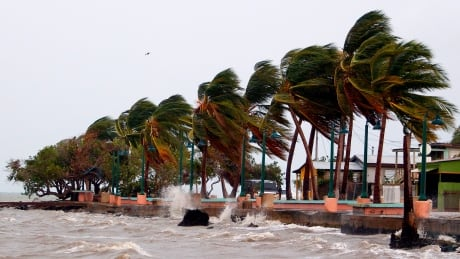 What happens when a hurricane hits a toxic waste site?