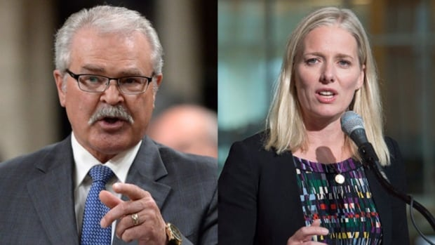 Conservative MP Gerry Ritz called Liberal Environment Minister Catherine McKenna a 'climate Barbie' on Twitter Tuesday night. He later deleted the tweet and apologized.