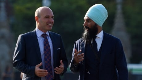 Nathan Cullen endorses Jagmeet Singh for federal NDP leadership