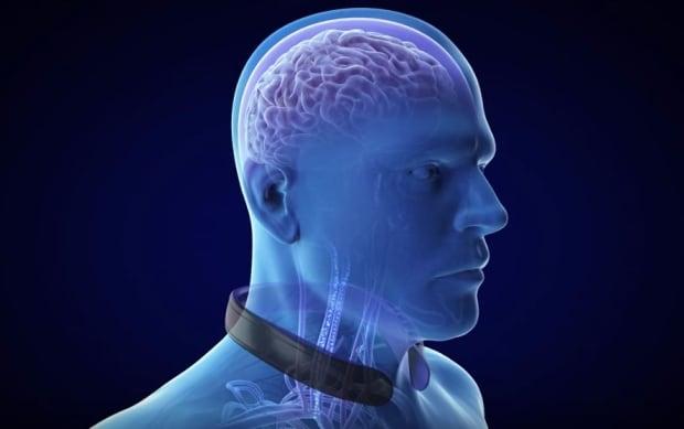 Bauer-NeuroShield-Collar