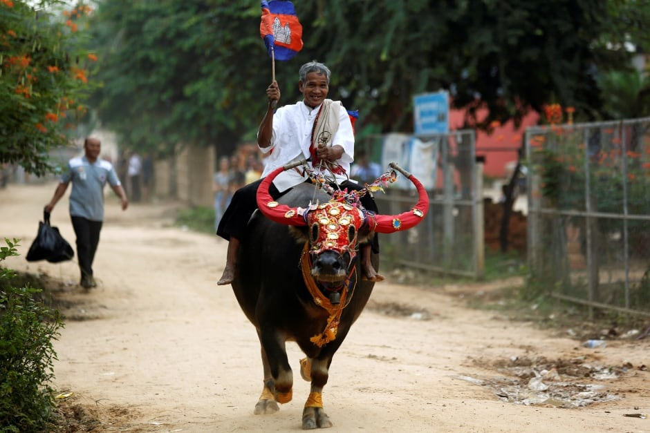 Week-cambodia-buffalo