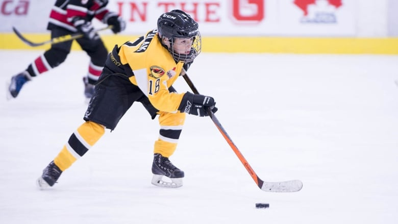 639885a94 Do concussion protocols in youth hockey go far enough