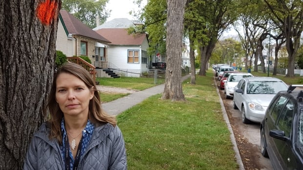 City forester Martha Barwinsky stands next to an elm tree marked for death on Lipton Street in Winnipeg's West End.