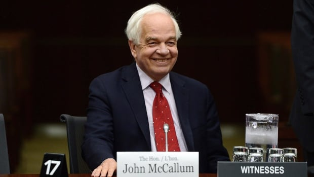 John McCallum, Canada's ambassador to China, says there are arguments for and against a free trade agreement with China.