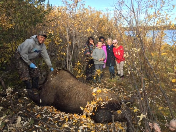 elementary school moose