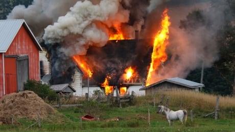 P.E.I. woman struggling to rebuild after home burns