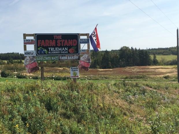 Trueman Blueberry Farms