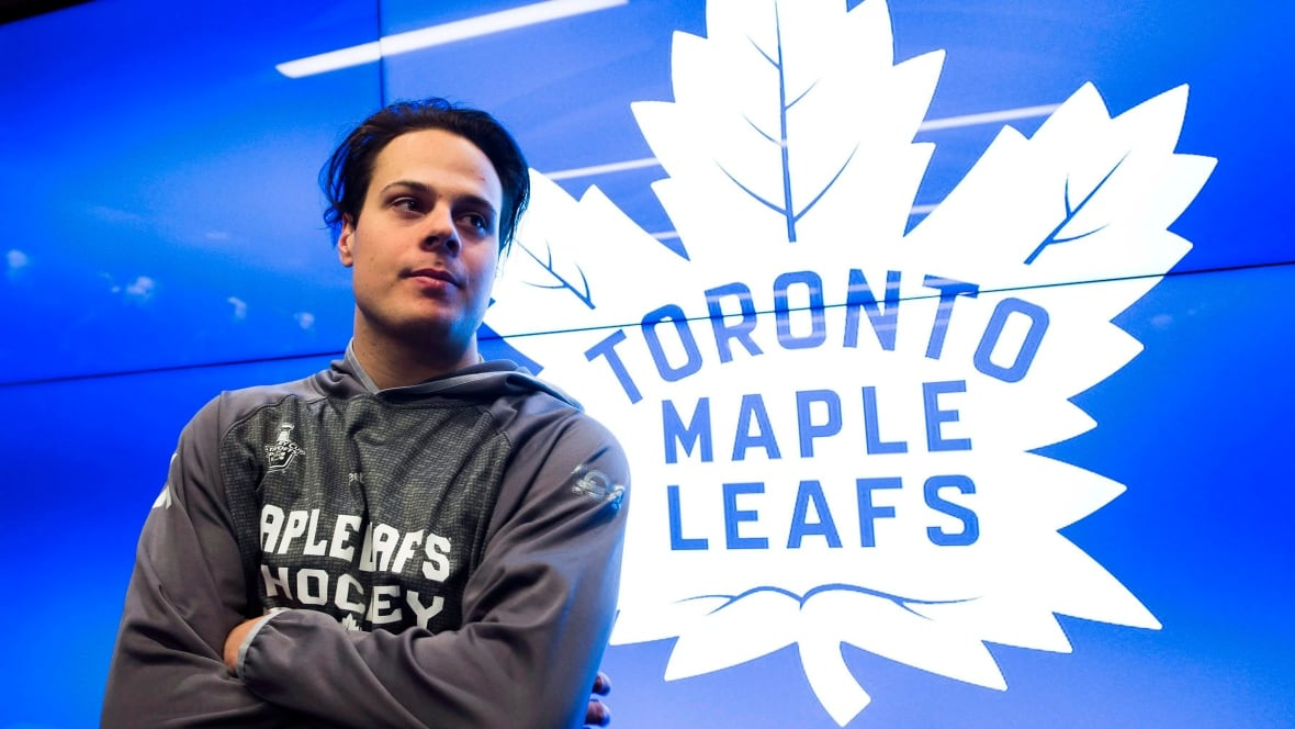 Hkn-maple-leafs-year-end-20170107