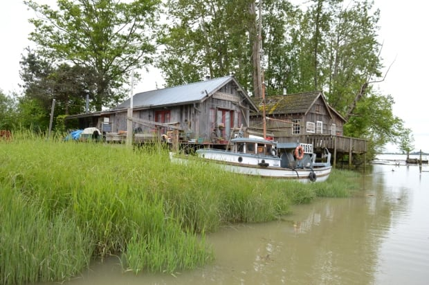 Homes hover over to the Fraser River in Finn Slough BC