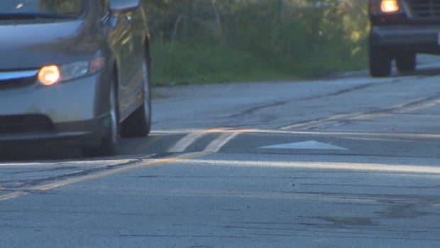 Call it a hump or a bump, it's not popular with some drivers. New traffic calming lumps have been installed along a deadly stretch of River Road in Richmond B.C.