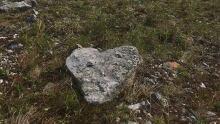 heart shaped rock nahanni butte