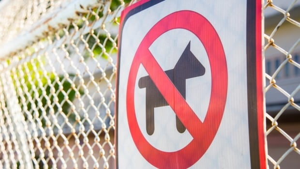 The District of West Vancouver's Animal Control Bylaw allows the municipality to remove a dog licence after five bylaw notices once a dog has been deemed aggressive.