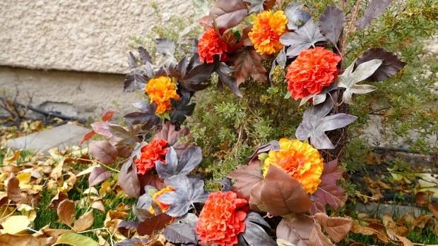Loretta Hamilton wreath