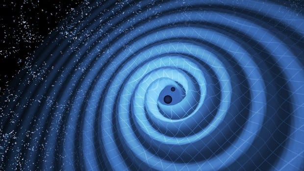 This illustration shows the merger of two black holes and the gravitational waves that ripple outward as the black holes spiral toward each other. In reality, the area near the black holes would appear highly warped, and the gravitational waves would be difficult to see directly.