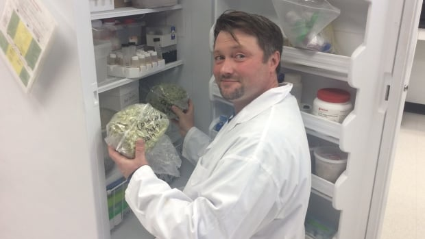 Jason McCallum shows some of the hops they have in their freezer in the lab.