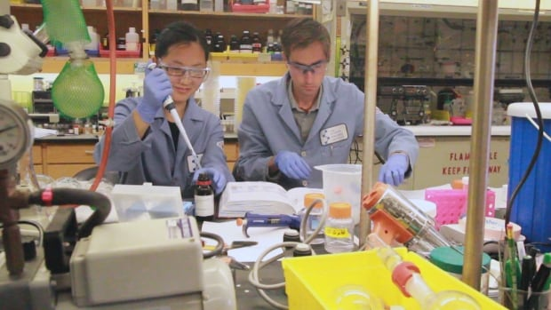 Researchers in La Jolla, California work on heroin vaccine