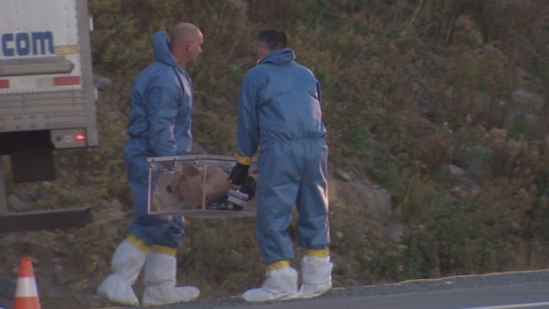 Crews removed objects from a truck that was pulled over on the side of Highway 102 on Oct. 5.