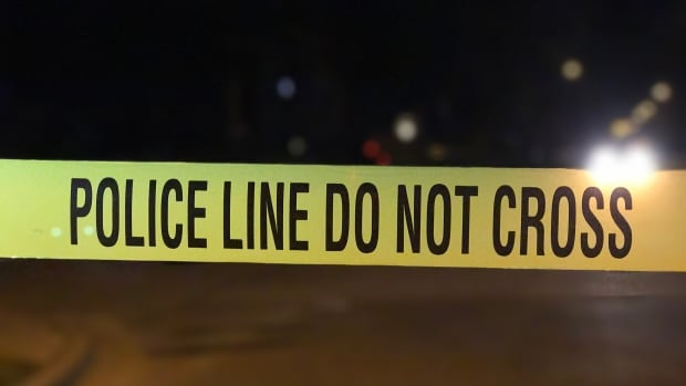 Two 21-year-old men are in custody following a road rage incident in Surrey, B.C., after someone allegedly shot at another car.