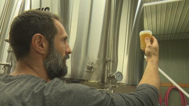 Shane Meloche, Frank Brewing Company