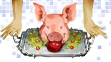 The rest of the pig image