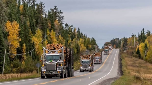 A convoy of 28 trucks took part in Friday's Load for Toad.