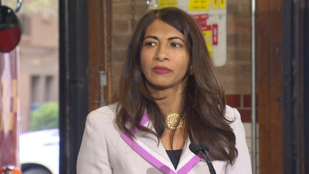 "During the announcement on Wednesday in Toronto, Minister of Seniors Affairs Dipika Damerla said the funding program is ""both responsive to the financial challenges the sector has raised, and balanced through a cost-share model."""