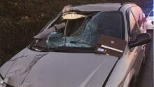 Smashed windshield Holyrood RCMP