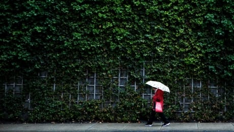 Weekend to bring another rainstorm to B.C.'s South Coast