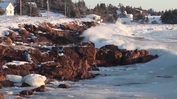 The small Cape Breton fishing village of Neils Harbour is the subject of a short documentary by 24-year-old Emily Fricker.