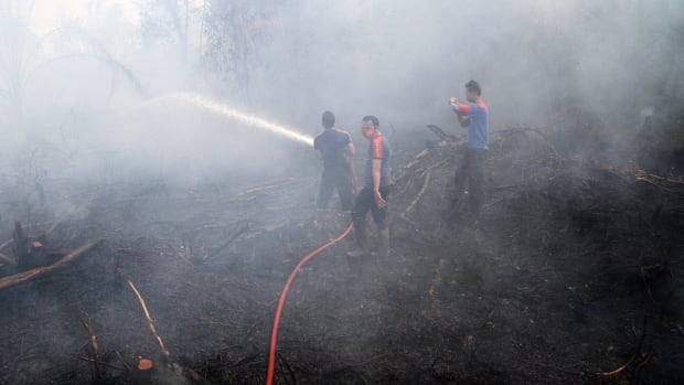 In this Sept. 16, 2014, file photo, firemen spray water in an attempt to extinguish bush fires in Siak Riau province, Indonesia. A new NASA satellite finds that El Nino is to blame for a recent record high increase of carbon dioxide in the air, which caused, among other things, increased forest fires in Asia.