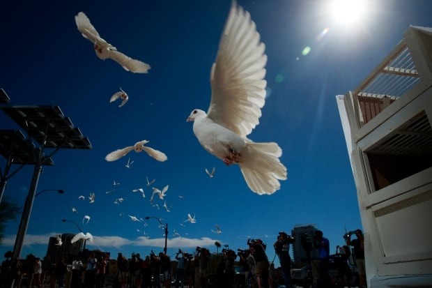 LAS VEGAS white doves released to honor mass shooting victims