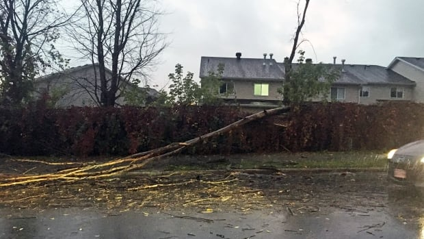 A downed tree blocks part of Carsons Road in Ottawa Sunday, Oct. 15, 2017, after a powerful windstorm battered the capital.