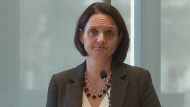 Minister of Children's Services Danielle Larivee on Monday spoke at a public meeting of the Ministerial Panel on Child Intervention.
