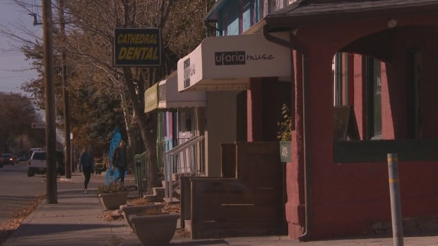 A number of businesses along 13th Avenue in Regina are small businesses.