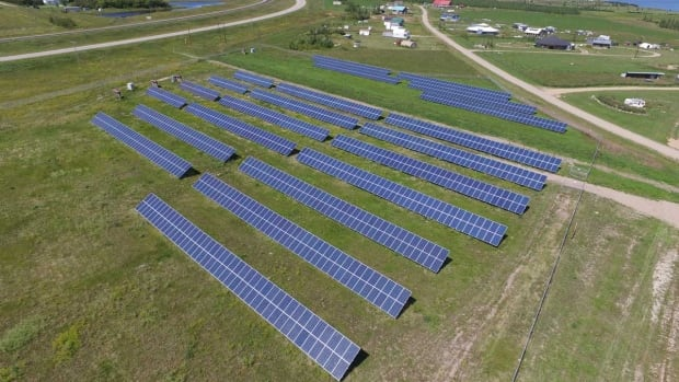 These 1,600 solar panels produce 400 KW of power at this farm near Craik, Sask.