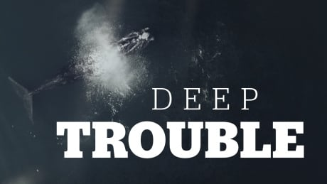 deep trouble podcast