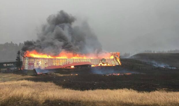 Coleman wildfire