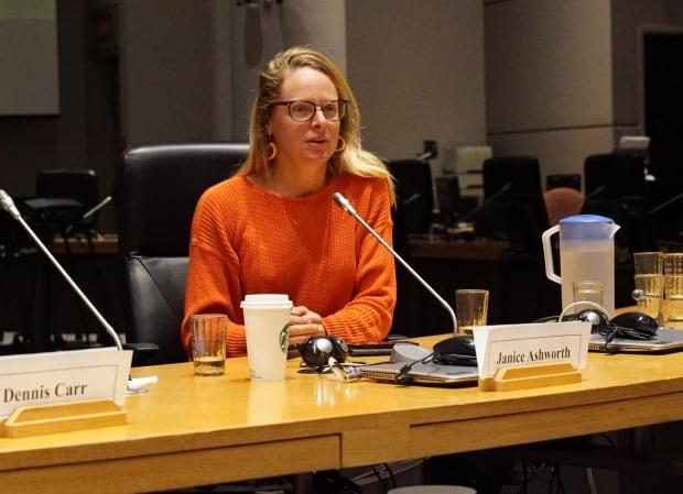 Janice Ashworth Oct 17, 2017 budget consultation